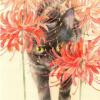 黑猫Alice