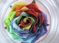 彩虹折纸玫瑰
