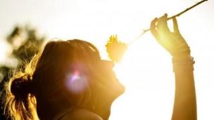 掌握摄影的灵魂——光