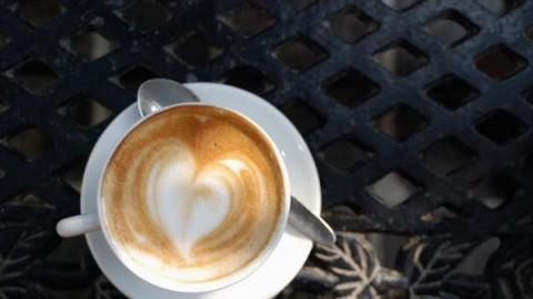 咖啡小课堂