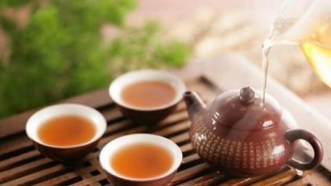 品茶,说茶——茶知识课程