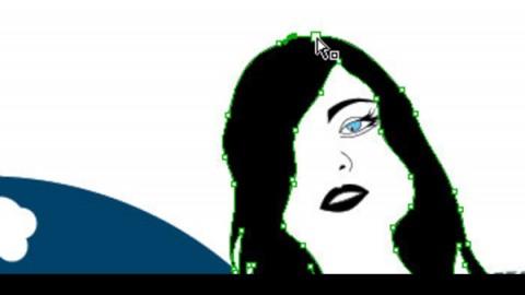 Adobe Illustrator实例教学